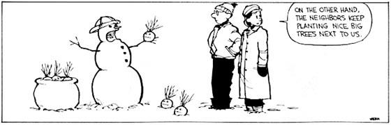Calvin and Snowmen10